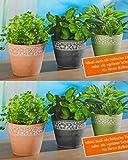 Kräutertöpfe Set aus 6 Töpfen Kräuter Blumen Übertöpfe für frische