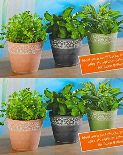 krautertopfe-set-aus-6-topfen-krauter-blumen-ubertopfe-fur-frische-krauterblumen-und-pflanzen-als-ti