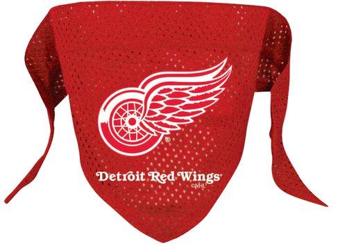 NHL Detroit Red Wings Pet Bandana, Team (Um Kostüme 1900)