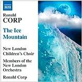 The Ice Mountain