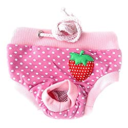 Medium , Type D : CHIC*MALL New Healthy Female Pet Dog Puppy Sanitary Pant Short Panty Diaper Underwear (M, Type D)