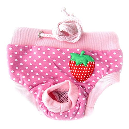 Large , Type D : CHIC*MALL New Healthy Female Pet Dog Puppy Sanitary Pant Short Panty Diaper Underwear (L, Type D)