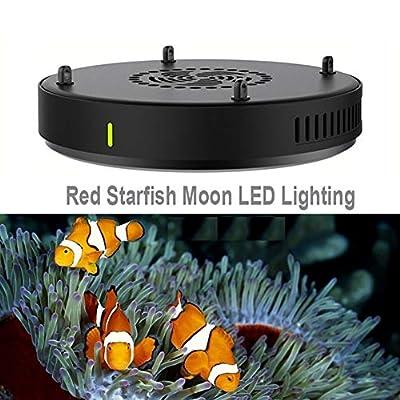 D3 54W LED Spectre Complet Aquarium lumière Corail lumière Lever du Soleil Lever du Soleil Eau de mer lumière Corail Cylindre éclairage WiFi Lampes de réservoir de Poisson