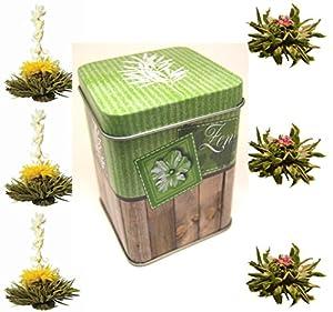 "mas usuarios: 6er-Dose Schwarztee-teaflowers ""negro Zen"" - Teerosen/flores de té material prob..."