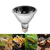 Quick-Heizung Reptil Ferninfrarot Heizlampe Sun Dome 220V Reptil Lampe Terrarium Schildkröte Eidechse Warm Nachtlicht Keramik Lampe Pet Keramik Heizung Lampe Reptil Wärme Erhaltung Bulb-White