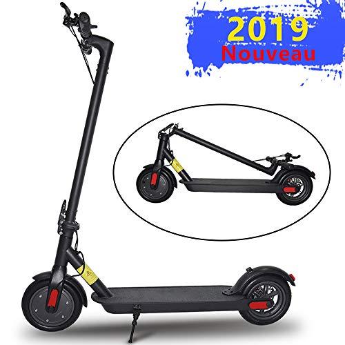 ScooterTrip Trottinette Électrique,...