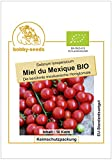 Bobby-Seeds BIO-Tomatensamen Miel du Mexique Portion