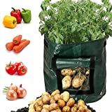 Huntfgold 3 Stück Pflanztasche Kartoffel Pflanzbeutel 10 Gallonen,ca 38 Liter Pflanzsäcke Garten Wachsende Tasche