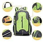 lingvi Trekking Hiking Backpack 30 Liter Water Resistant Travel bag Outdoor Camping Backpack for boy girl (Black) - hiking-backpacks