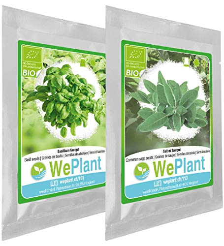 BIO Basil & Common sage herb Plant Seeds Set - Indoor/Outdoor