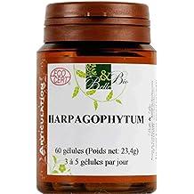 BELLE ET BIO - Harpagophytum bio - 200 gélules