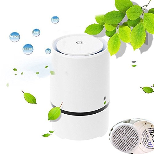 Express Panda Desktop Luftreiniger Ionizer mit True HEPA Luftfilter Technologie - Portable Luftreiniger und Luftreiniger für den Einsatz in Schlafzimmer, Büro, Auto, Küche, Badezimmer