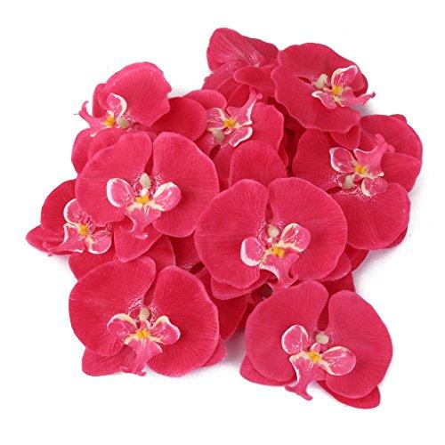 20x-Flor-Orqudea-Artificial-de-Pelo-Mueca-Decoracin-de-Boda-fucsia