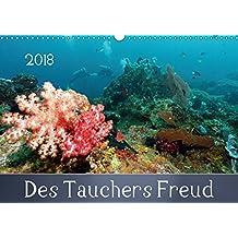 Des Tauchers Freud (Wandkalender 2018 DIN A3 quer): Das tropischen Gewässer vor Pemuteran im Norden der indonesischen Insel Bali ist unter Tauchern ... (Monatskalender, 14 Seiten ) (CALVENDO Natur)