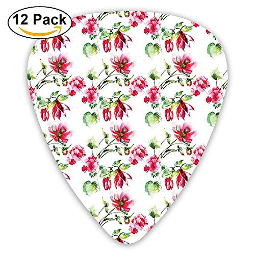 Shabby Chic Floral Details Roses Tulips With Leaves And Buds Colored Print Guitar Picks 12/Pack Set Floral Tulip-rock