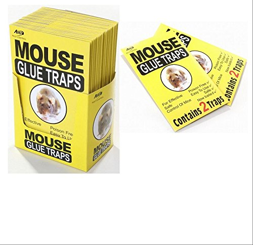 giftlocaluk-set-of-8-mouse-rat-cockroach-insects-trap-adhesive-glue-board-trap-mouse-glue-traps-8-pa
