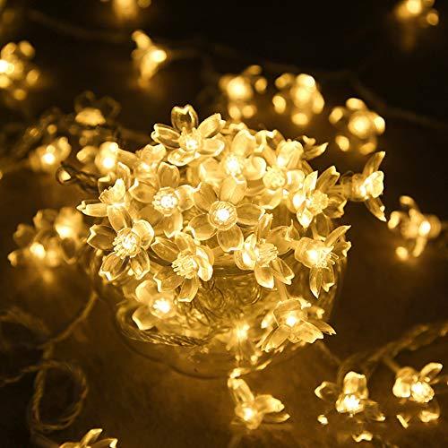 WXD LED Lichterkette Bauhinia Lantern Festival Hochzeitsraumdekoration Lichterkette Laternenparty/Garten/Hof/Valentinstagdekoration, Warmweiß [Energieklasse A ++],White,3m30lights