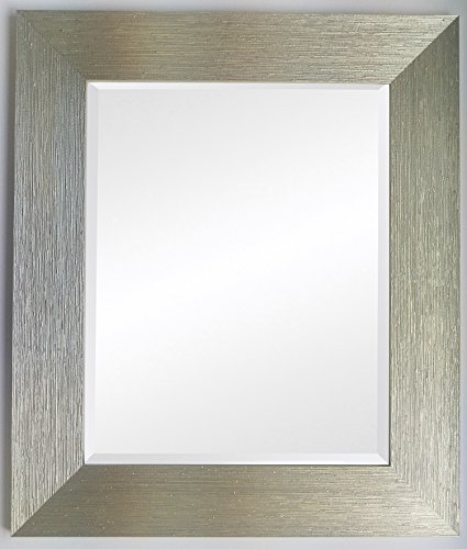Frames by Post Spiegel, plastik, Silver Gold Mesh, Bev 24 x 12 inch