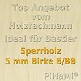 PiHaMi® 5 mm Birke Sperrholzplatte Qualität B/BB (50 x 30cm) GP 17,93 € pro m²