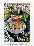 1art1 Henri Matisse Poster Reproduction - Pesci Ross I (70 x 50 cm)