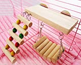 Generic Hamster Cages