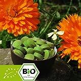 Bio Gerstengras Presslinge – Tabletten 500g