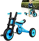 Fascol Children Tricycle Adjustable Seat 3 Wheel Pedal Bike for 2 to 5 Years Kids Maximum Weight 25 kg