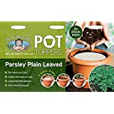Mr Fothergill's 24669 Parlsey Plain Leaved Pot Toppers