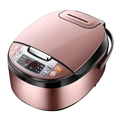 WYBW Cuiseur à Riz, 4L cuiseur à Riz Intelligent Maison, cuiseur à Riz entièrement Automatique de Grande capacité,comme montré,Taille Unique WYBW