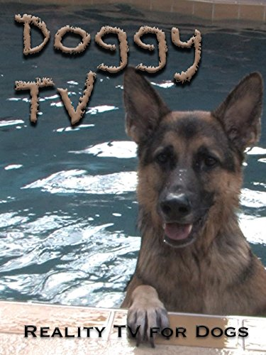 Doggy TV (Reality TV for Dogs) [OV]