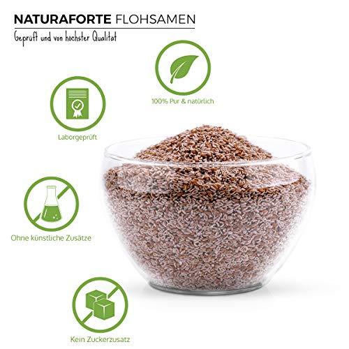 NaturaForte Flohsamen 1 kg, Indische Premium Qualität, Low-Carb, Glutenfrei, Vegan, Ballaststoffreich, Superfood, Nachhaltig und Fair
