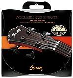 Ibanez IABS4XC Akustik-Bass - 040-095