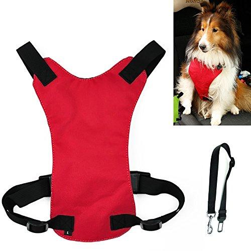Hund Auto Harness Pet Sicherheitsgurt, Hundegurt, Pet Rückengurt, Pet Sicherheitsgurt, Hund, Katze und Pet Durable Auto Sicherheitsgurt,Red (Pet Kleidungsstück)