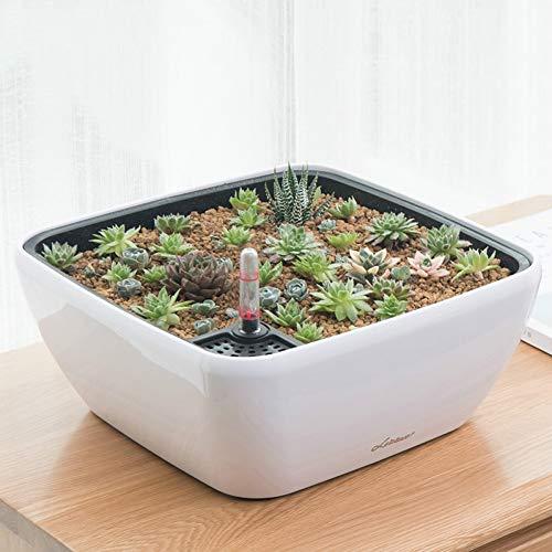 Naisicatar Dauerhafte Anlagen Zubehör Automatische Saug Flowerpot Einfache Quadrat Rund Fleischige Pflanzen Keramik Balkon mit großem Durchmesser aus Kunststoff Faulen Töpfe