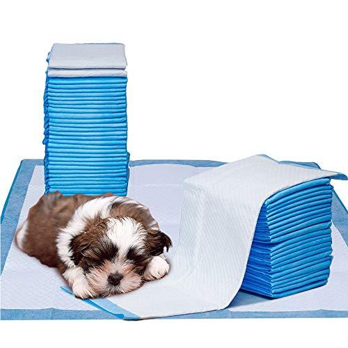Youyababay Tappetino da Addestramento per Cuccioli Pet Assorbente, 60x60cm, 40 Pezzi