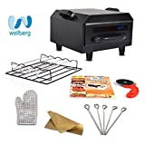 #8: WellBerg Micro Combo Electric Tandoor