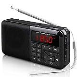Radio Tascabile FM Radio Portatile Digitale Radio con Altoparlante Lettore Musicale Supporto Lettore U Disco e Micro SD Card AUX MP3 Support USB Drive TF Card AUX-in Earphone-outMini Radio (Y-01)