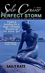 Perfect Storm: Romantic and Raunchy (Solo Cruiser Book 2)