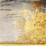 Songtexte von Will Johnson - Vultures Await
