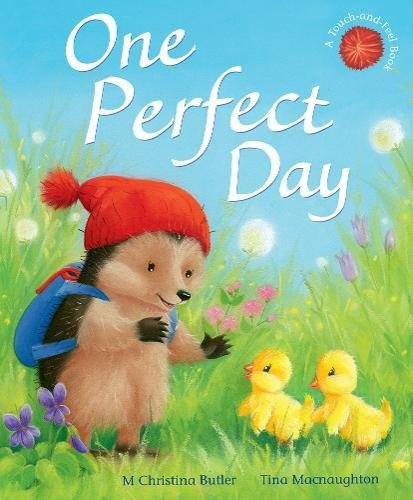 One Perfect Day (Little Hedgehog)