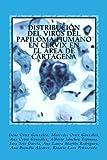 Distribución del virus del papiloma humano en cérvix en el área de Cartagena