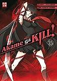 Akame ga KILL! 15