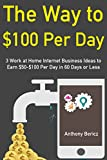 The Way to $100 Per Day: 3 Work at Home Internet Business Ideas to Earn $50-$100 Per Day in 60 Days or Less