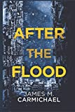 After the Flood (Corsa Moran Series)