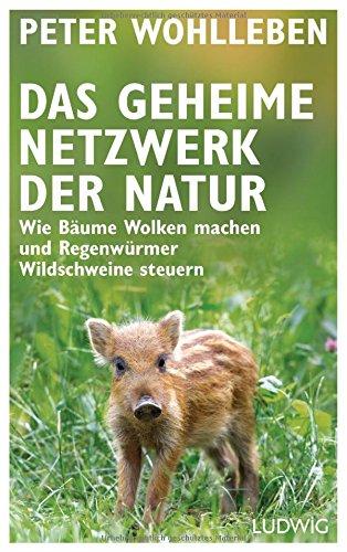 Preisvergleich Produktbild Das geheime Netzwerk der Natur: Wie Bäume Wolken machen und Regenwürmer Wildschweine steuern