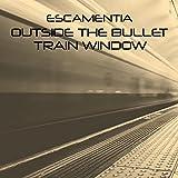Outside The Bullet Train Window