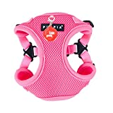 Puppia PAQA-AC1443 Hunde Geschirr, Neon Soft Harness C, small, pink
