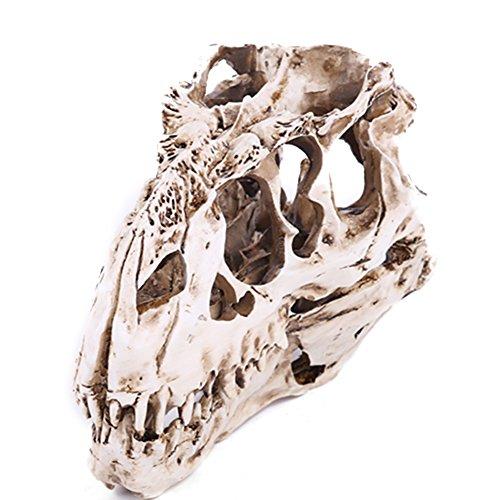 Qiulv Harz Tyrannosaurus Rex Schädel Dinosaurier Schädel Handwerk Replikat Kopf Knochen Modell Halloween Dekoration Ornament