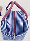 Gold Leaf Portable Insulated Striped Thermal Cooler Lunch Box Storage Bag (23x15x17cm, Blue)