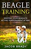 Beagle Training: Keeping Your Beagle's Active Temperament At Bay (Dog training, Puppy Training, Housebreaking, Motivation, Beagles)